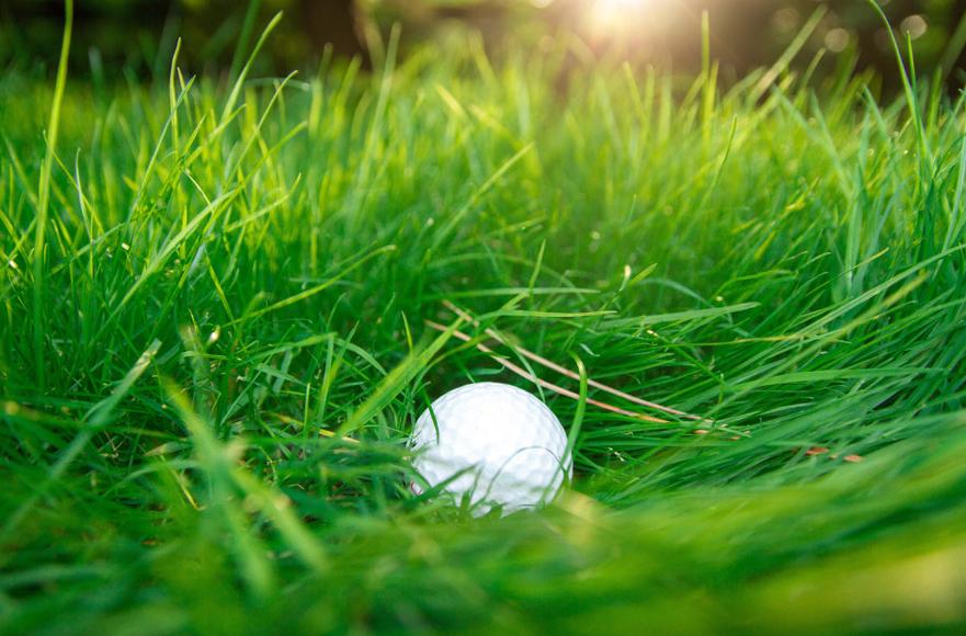 ゴルフボールの寿命はどのくらい?~交換時期の目安とボールのお手入れ方法~